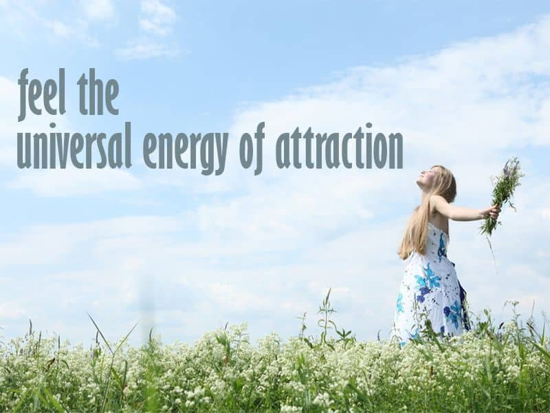 law of attraction work